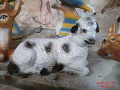 Yatan Kuzu Maketi Dogs, Animals, Animales, Animaux, Pet Dogs, Doggies, Animal, Animais