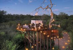 Lion Sands' Chalkley Tree House, Kruger National Park, South Africa.
