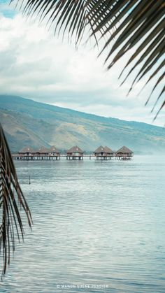 Tahiti, Photos Voyages, List, Belle Photo, Blogging, Wallpapers, Beach, Places, Poster
