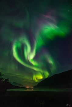 Phoenix by Jon-Eirik Boholm