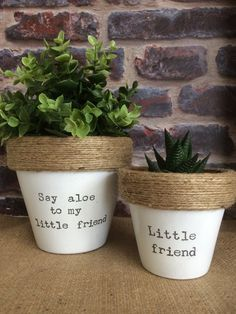 'Say aloe to me little friend' and 'Little friend' Double purchase! The perfect plant pot gift! Hand stamped and varnished for protection, the twine detailing adds rustic charm. These indoor plant pots measure approximately diameter (Say aloe to my li Best Potted Plants, Indoor Plant Pots, Indoor Planters, Pots For Plants, Cactus Plant Pots, Diy Planters, Outdoor Plants, House Plants, Container Plants