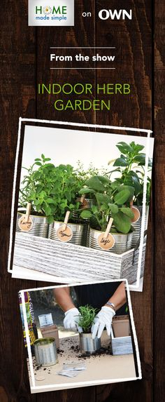 How to create an indoor herb garden for your kitchen counter. Simply upcycle tin cans, fill them with soil and your favorite herbs, label with clothespins and voila! For more easy DIY projects, watch Home Made Simple, Saturdays, 9am/8C on OWN: Oprah Winfrey Network.