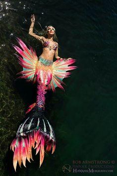 Mermaid Tail by Hannah Fraser and Finfolk Photo by Bob Armstrong Mermaid Board, Mermaid Man, Mermaid Cove, Mermaid Fairy, Fantasy Mermaids, Real Mermaids, Mermaids And Mermen, Mermaid Cosplay, Mermaid Costumes