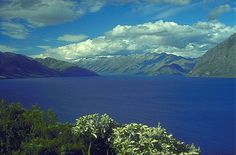 lakes   oligotrophic lakes are generally clear deep and free of weeds or large ...