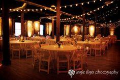 Indoor Wedding Lights