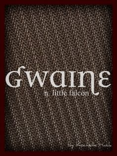 Baby Boy Name: Gwaine. Meaning: Little Falcon or White Falcon. Origin: Welsh. http://www.pinterest.com/vintagedaydream/baby-names/