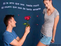 Imágenes Y Frases Llevas De Amor