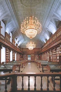 University Library at Salamanca University has one of the most important and beautiful university libraries in Spain.