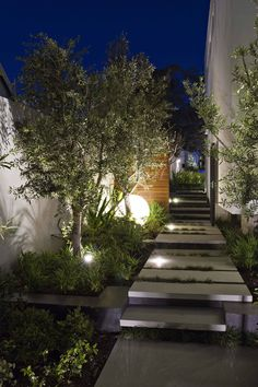 Garden pathway, garden lighting, timber panel, planting