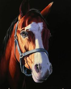 #картины#бархат,#картинанабархате,#картинаназаказ,#картинамаслом,#картина,#картиналошади,#картинакавказ,##жеребец,#жеребцы##конь,#табун,#лошади#horse,#horses,#horseart,#horsepainting,#horseportrait,#equine,#equineart,#equineportraits,#velvetart,#velvetpainting,#velvetartgallery