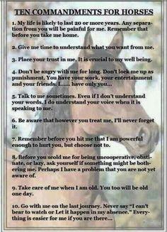 Ten Commandments for Horses