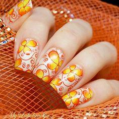 Born Pretty Nail Art Stamping Template Image Plate Elegant Flower BP16 : Beauty