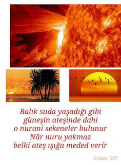Balık suda yaşadığı gibi, güneşin ateşinde dahi o nurani sekeneler bulunur. Nâr nuru yakmaz, belki ateş ışığa meded verir RN-Sözler/507