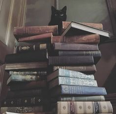 Black Cat and Books. Purrfect. Via @blackveiltattoo on Instagram.
