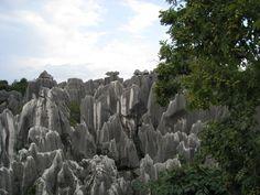 Steinwald in der Nähe von Kunming