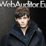 WebAuditor