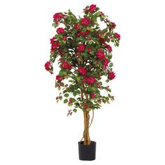 Bring fresh beauty to your sunroom or den with this eye-catching bougainvillea arrangement, showcasing red and green hues.     Product: