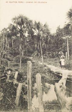 Camino de Celendín. Iquitos [fotografía]
