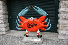 MD crab- Go O's!!!
