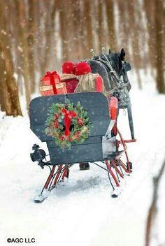 Christmas sleigh...Oh what fun!