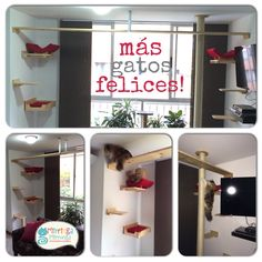Gimnasio con puente Ideas Para, Cat, Furniture, Home Decor, Cat Scratching Post, House For Cats, Bridge, Kittens, Life