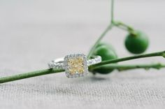 Engagement Rings 2017/ 2018   Gallery & Inspiration | Picture  814681