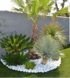 58 Ideas For Backyard Garden Design Layout Shape Stone Patios - New ideas Garden Yard Ideas, Diy Garden, Patio Stones, Outdoor Gardens Design, Palm Trees Garden, Backyard Landscaping Designs, Garden Design Layout, Backyard Garden Design, Garden Pathway