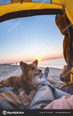 schönes wochenende bilder hunde  #schöneswochenendebilderhunde #Wochenende Good Day Wishes, Gb Bilder, Advent, Celestial, Mountains, Nature, Travel, Outdoor, Good Morning Photos