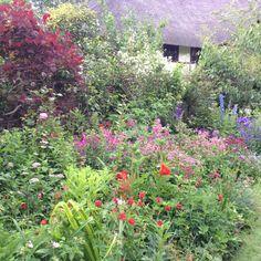 Cottage garden using colour wheel