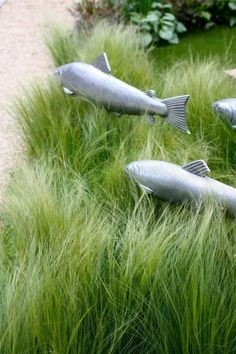 """Decorating the garden with pretend fish is not something that has ever crossed my mind, but seeing these fish """"swimming"""" through the native grass made me reconsider my opinion (slightly).    What do you think of them?"""