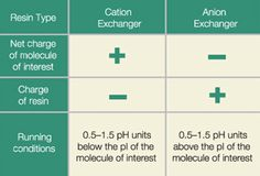Choosing Cation or Anion Exchangers