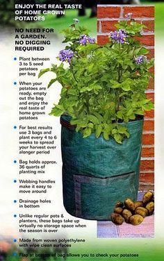 Potato Deck-Patio Grow Planter Bag