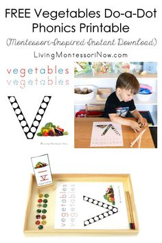 """This free vegetables do-a-dot phonics printable is a Montessori-inspired printable for home or classroom. It's a versatile nutrition-themed or letter """"v"""" themed instant download - Living Montessori Now #nutritiontheme #Montessori #homeschool #preschool #toddler #freeprintable #vegetables #letterv Montessori Color, Montessori Materials, Maria Montessori, Preschool Themes, Toddler Preschool, Montessori Quotes, Montessori Homeschool, Games For Toddlers, Toddler Games"""