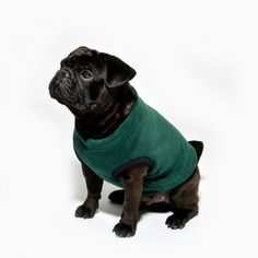 www.chezvalde.com Sweater - Classic Green French Bulldog, Sweater, Classic, Dogs, Green, Clothing, Animals, Derby, Outfits