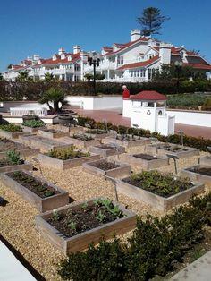 Herb garden at the Del Coronado Hotel in Coronado , Ca