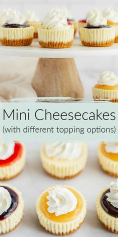 These Mini Cheesecakes feature a homemade graham cracker crust with a smooth and creamy cheesecake filling. This recipe is incredibly easy to make and includes several different topping options to use too! Valentine Desserts, Easy Desserts, Delicious Desserts, Dessert Healthy, Dinner Healthy, Health Desserts, Mini Cheesecakes, Recipe For Individual Cheesecakes, Mini Cakes