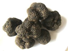 http://robmonferrato.blogspot.com/2013/02/summers-harvest-of-truffles.html