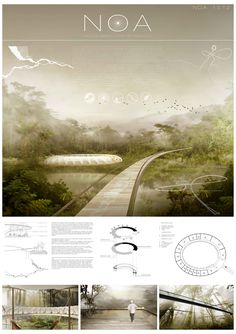 Finalist, Premio Especial de Arquideas Nature Observatory of Amazonia