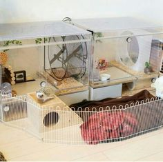 hedgehog cage                                                       … …