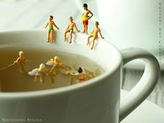 Pool Play | Flickr - Photo Sharing! Miniature photography