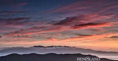New Zealand Kaka | BENIsLAND - Photography