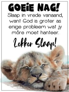 Good Night Wishes, Good Night Sweet Dreams, Evening Quotes, Goeie Nag, Sleep Tight, Beautiful Pictures, Afrikaanse Quotes, Poems, Prayers