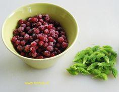 Kuusenkerkkä-puolukka -yhdistelmä vie kielen! Raspberry, Good Food, Vegan, Fruit, Sweet, Vegetable Garden, Eggs, Candy, Raspberries