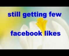 stewenbest: add 50 facebook likes within 24 hr for $5, on fiverr.com