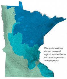 minnesota-topographics-biome-map-large.png (840×987)