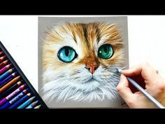 Colored pencil drawing - Fantasy feather! | Leontine van vliet - YouTube
