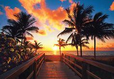 Hermoso atardecer en la playa de Hollywood Beach. Elija su hotel en Fort Lauderdale y disfrute de esta magnífica vista #HollywoodBeach #FortLauderdale #Playa