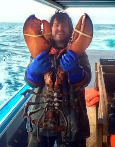 A Brier Island [Nova Scotia, Canada] fisherman has caught a big one — an Atlantic lobster weighing just under 17 pounds.