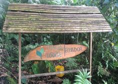 Include a stay at Minga Lodge on your tailor-made vacation to Ecuador created by Audley's travel experts. Ef Tours, Audley Travel, Amazon Rainforest, Tanzania, Lodges, Ecuador, South America, Traveling, Wanderlust