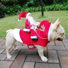 TooLoud Santa Paws Christmas Dog Dark Hoodie Sweatshirt
